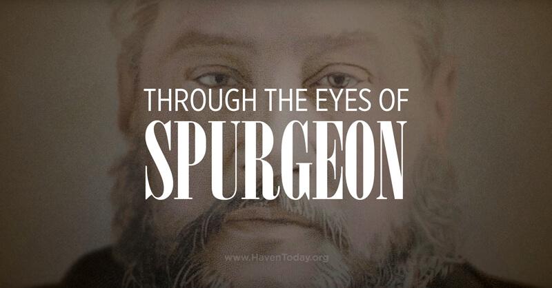 through-eyes-spurgeon-trailer-blog